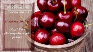 На Закарпатті відбудеться фестиваль черешень та ягід