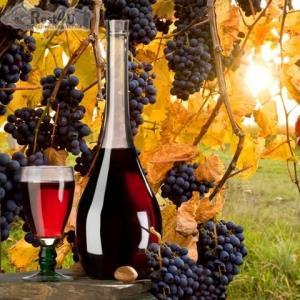 У Берегові проходитиме II-й фестиваль молодого вина та гусячих страв