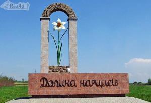 Долина нарцисів – один з найкрасивіших куточків України