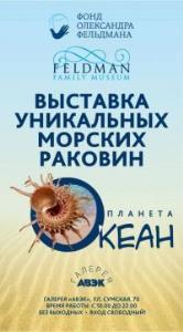 Выставка морских раковин в Харькове