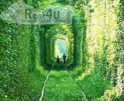 Тунель кохання в Рівненській області