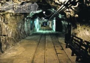 Еврофанов стоит спустить в донецкие шахты